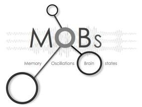 cropped-mobslogo.jpg